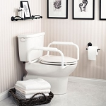 Moen Toilet Safety Rail